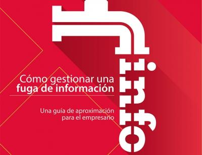 Guía gestión fuga de información
